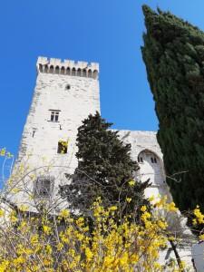 x.Avignon. 342 ko